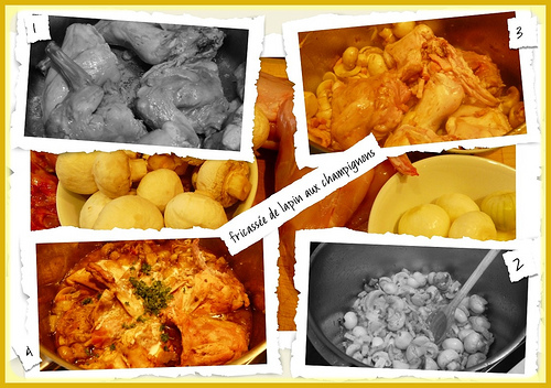 fricassee-de-lapin.2012919234454
