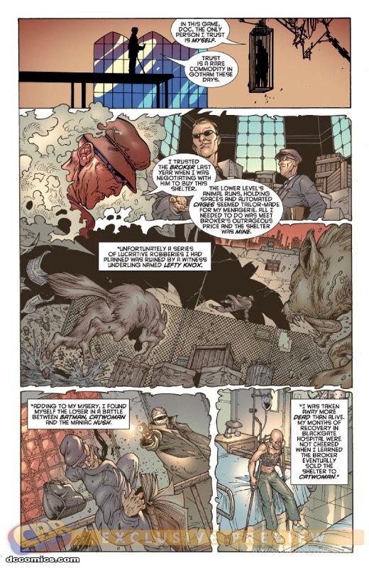 Gotham City Sirens [Série] - Page 2 Prv4782_pg4.20103319175
