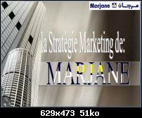 Marketing - Rapport De Stageà Marjane Sous Le Théme La Strategie Marketing Vignettes